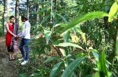 Indiai Apuka Az Erdőben Dugja Lányát